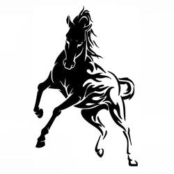 Конь, Лошадь, Жеребец