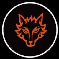 Проектор логотипа на мотоцикл FOX-ЛИС
