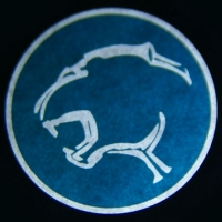 Проектор логотипа на мотоцикл Ford Cougar