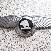 Логотип Skoda с крыльями