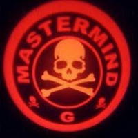 Подсветка дверей с логотипом Master Mind 5 W mini